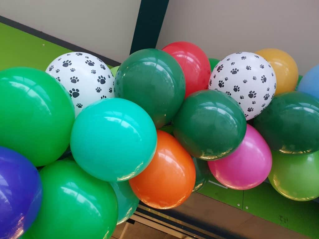 20201003 082912 1024x768 - Dierendag met creatieve ballondecoraties